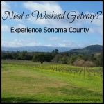 Experience Sonoma County